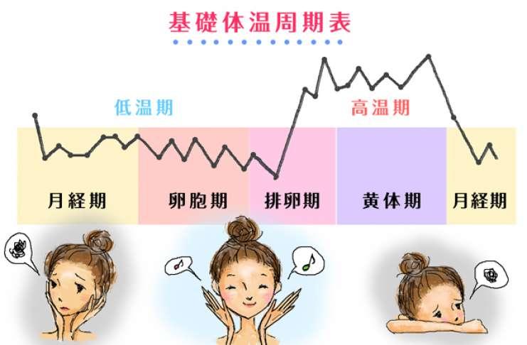 女性 高温 期 体温