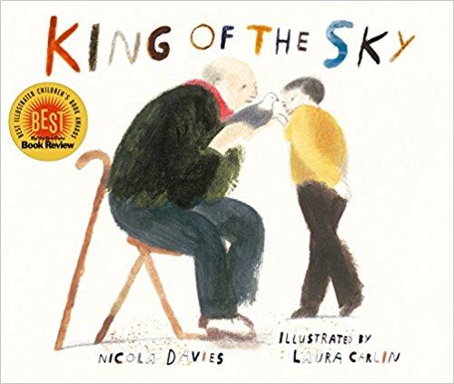 纽约时报2017年度最佳儿童绘本