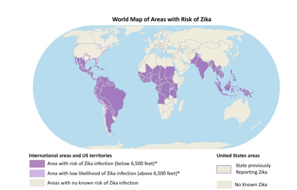 寨卡病毒Zika Virus