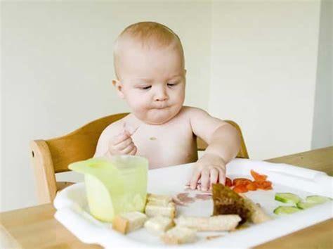 BLW辅食喂养法