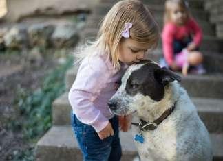 孩子养宠物安全吗
