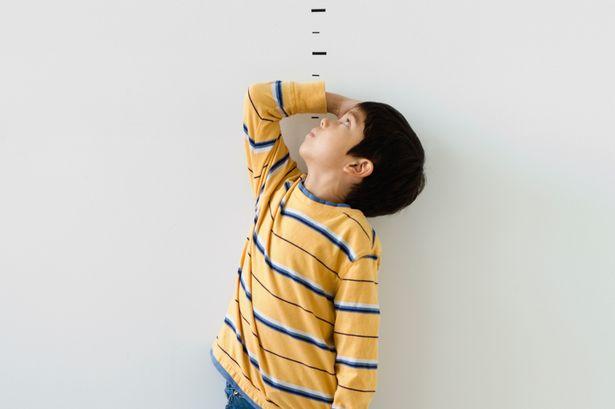 孩子身高发展