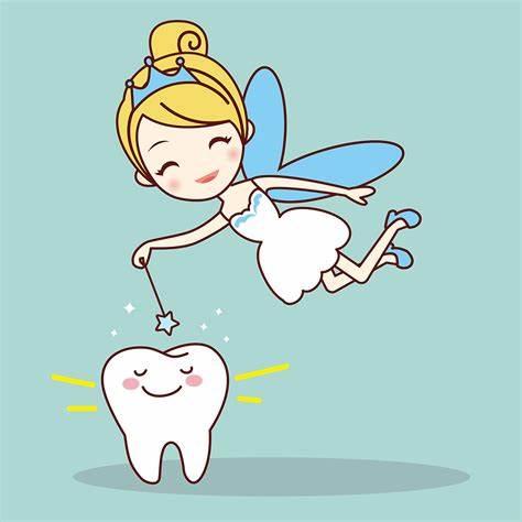 美国宝宝换牙