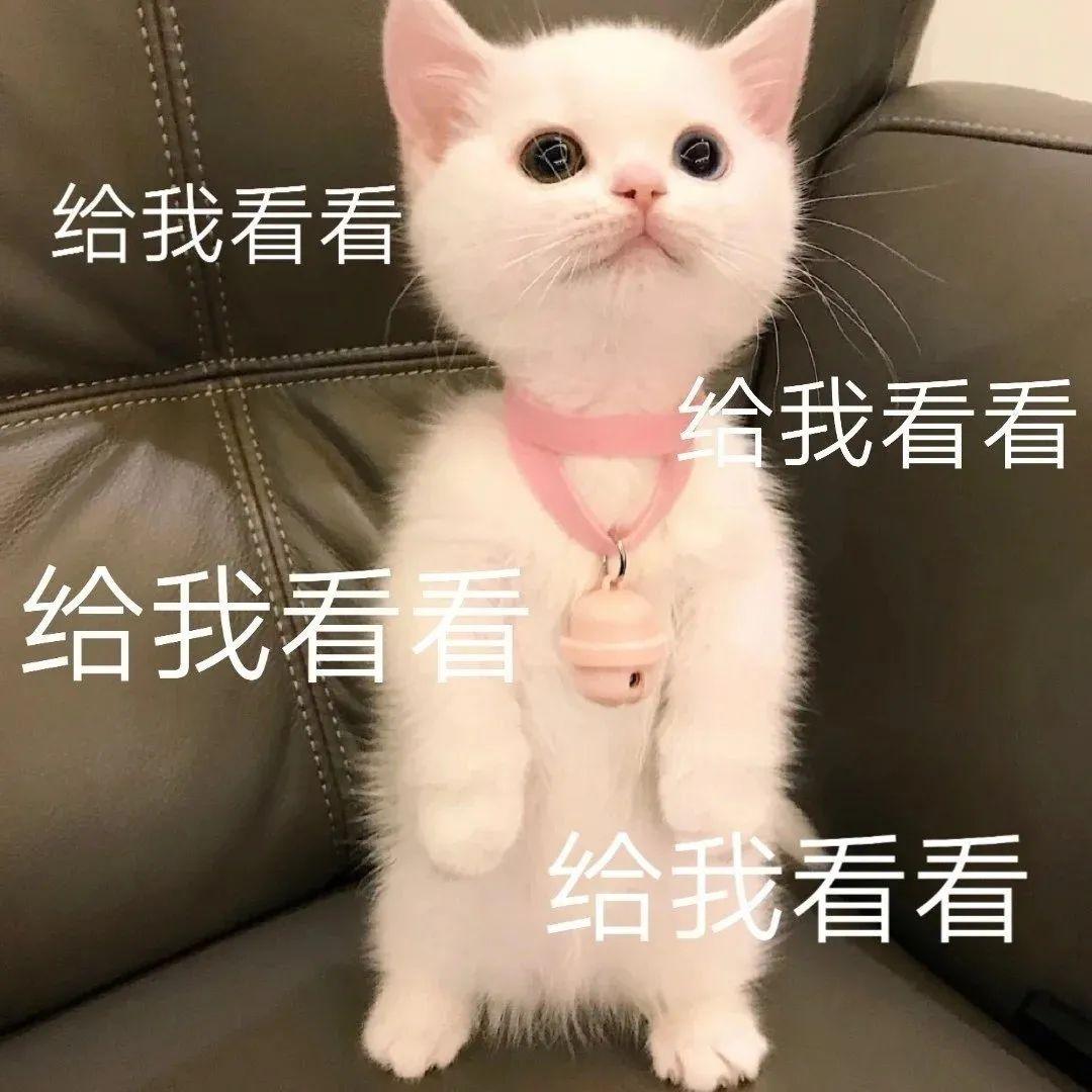 宝宝动画片分年龄段推荐
